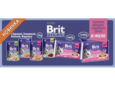 Brit Premium влажный корм для кошек! Новинка!
