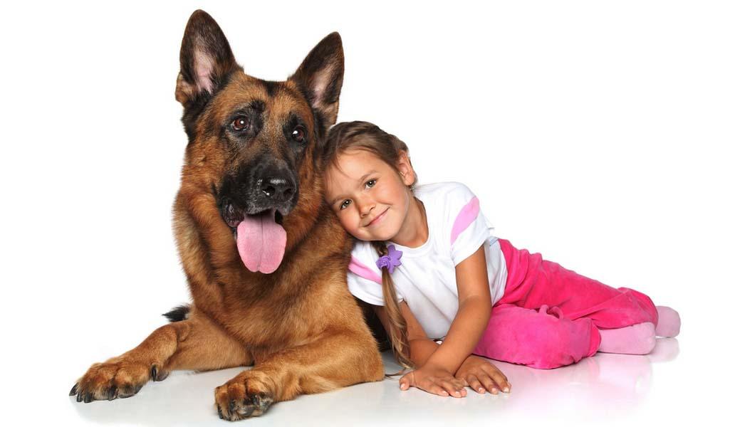 как_выбрать_собаку_для_ребенка