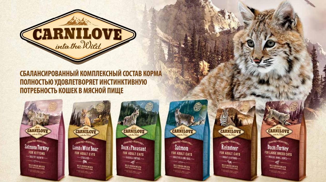 Переноски для кошек - купить в Киеве и Украине, цены на