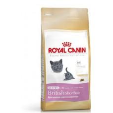 "Royal Canin ""Kitten British Shorthair"" корм для котят британцев"